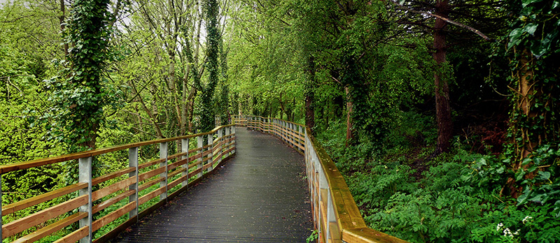 Midsomer Norton Boardwalk in Somerset