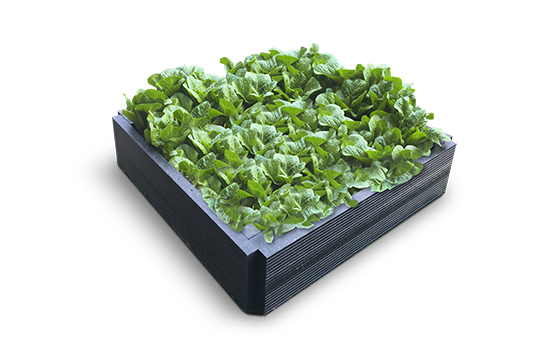 Plaswood recycled plastic raised bed