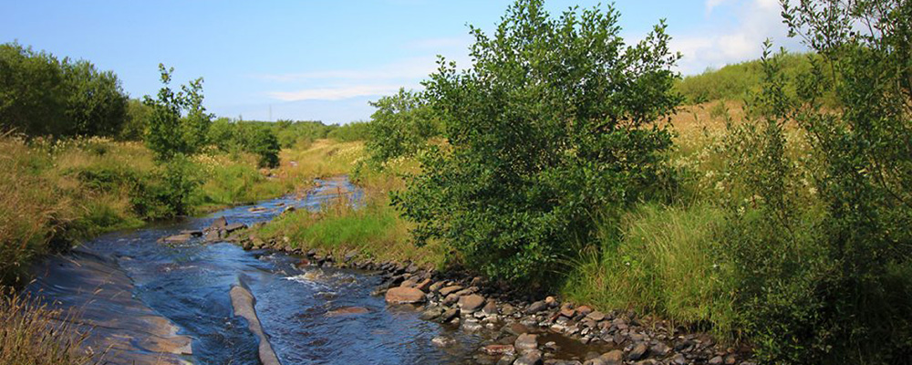 Phase two of River Keekle restoration project